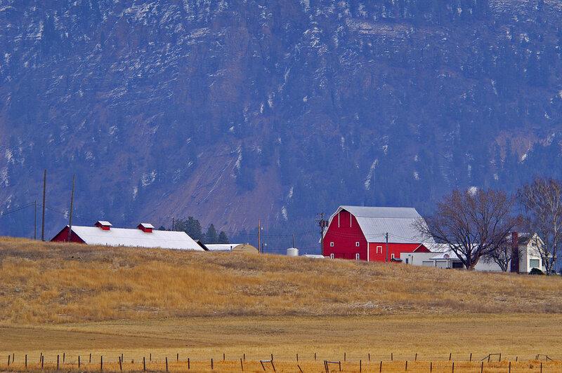 Charming farm scene, Columbia Falls, Montana