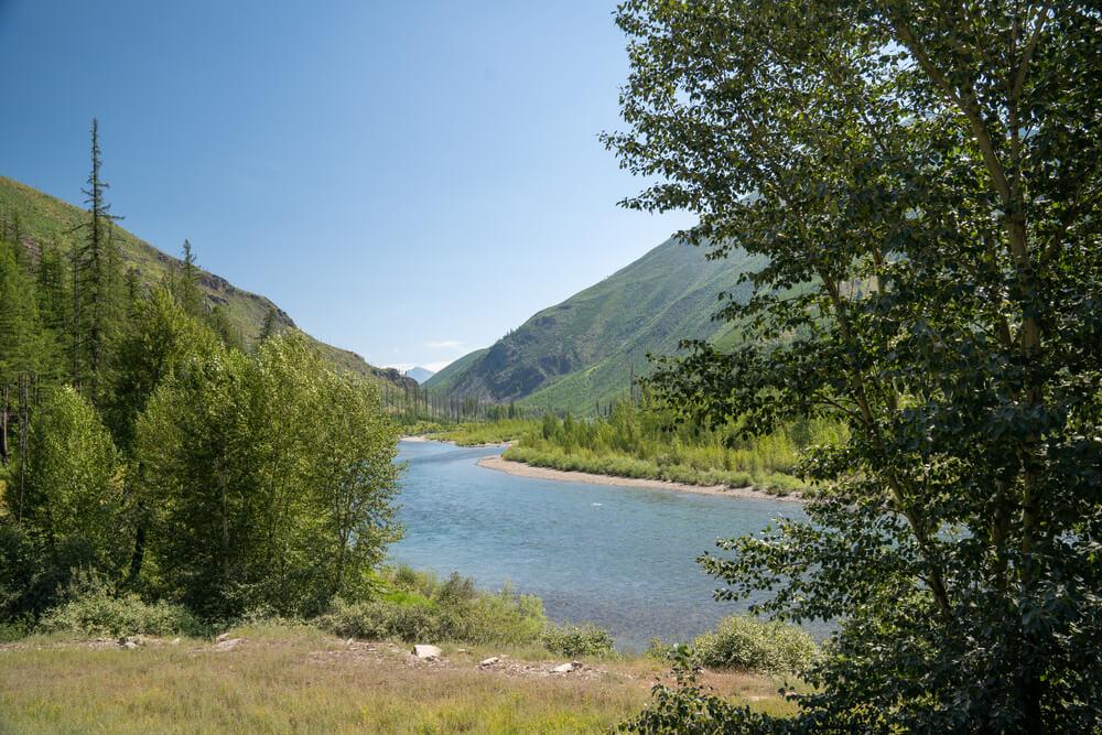 flathead national forest montana