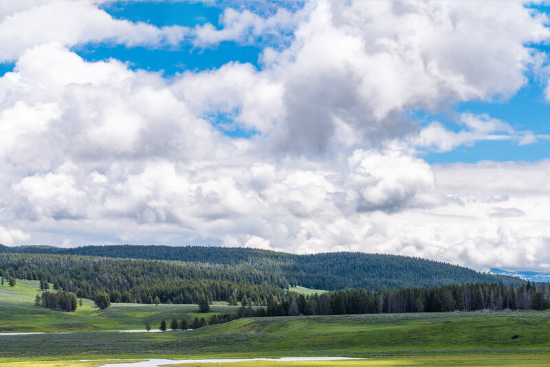 hayden and lamar valley