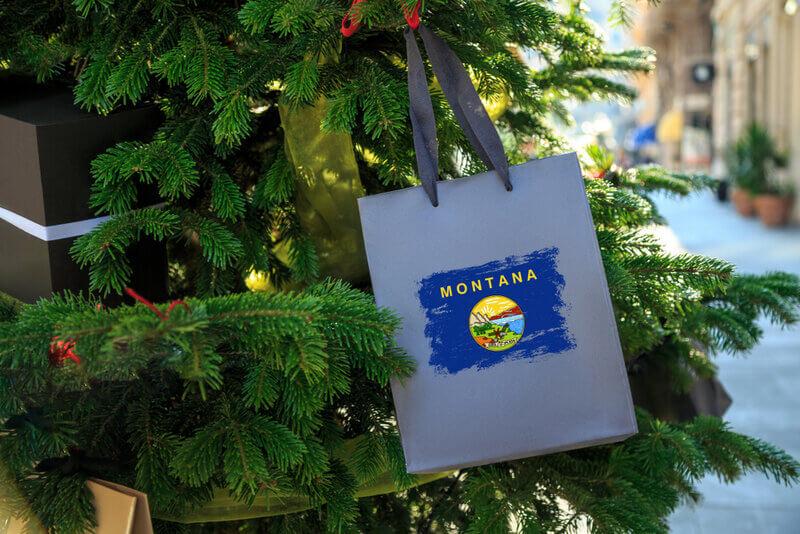 montana state flag printed on bag