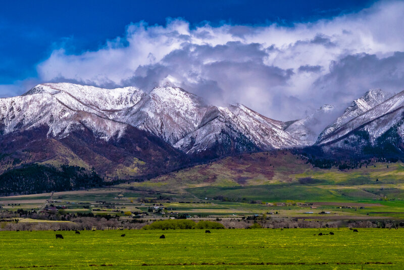 things to do in montana in august