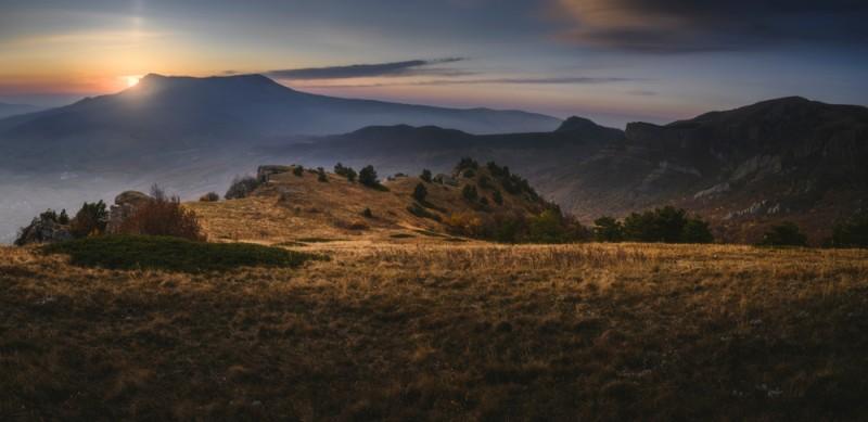 Montana Local Newsletter
